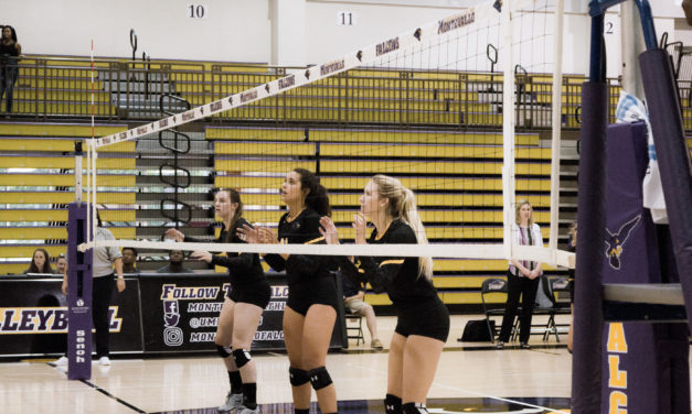 Falcon's volleyball season off to promising start
