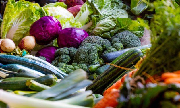 OP-ED: Veganism – a moral imperative?