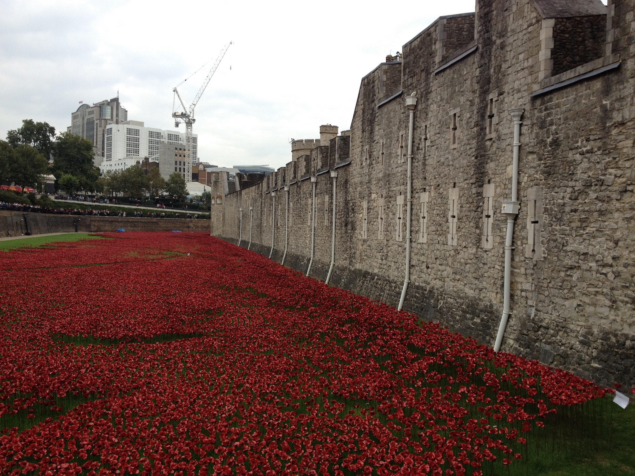 The eye-catching flora outside of the Tower of London