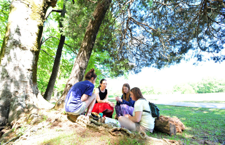Group of students sitting outside on a sunny day.